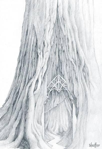 Organic Drawing - Lothlorien Mallorn Tree by Curtiss Shaffer