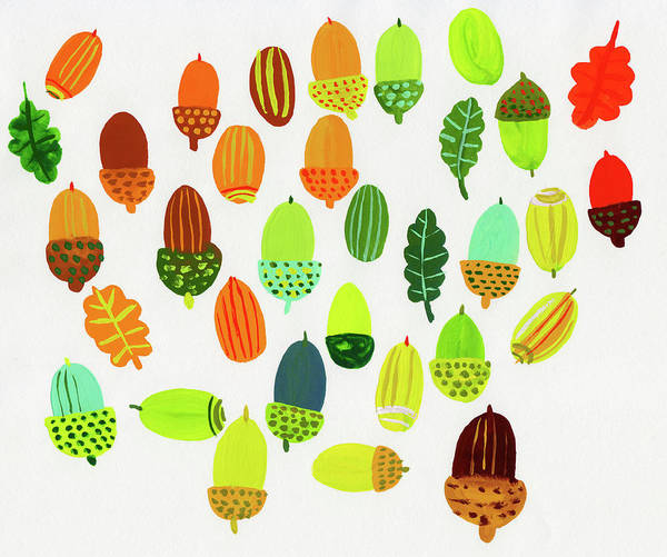Wall Art - Photograph - Lots Of Different Color Acorns by Ikon Ikon Images