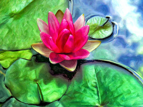 Painting - Lotus Blossom And Cloud Reflection by Dominic Piperata