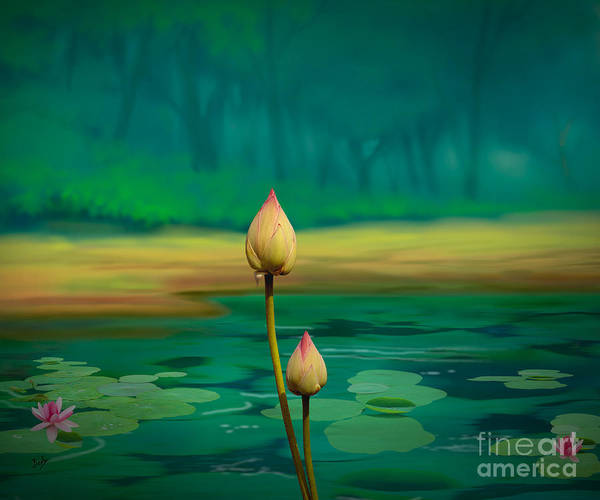 Faded Digital Art - Lotus Buds by Peter Awax