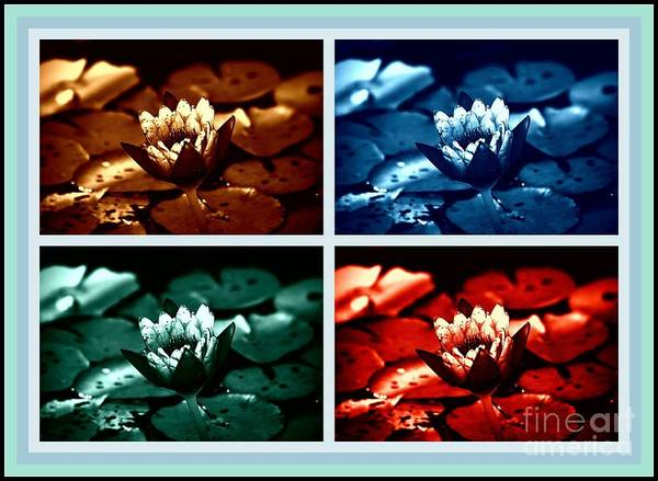 Photograph - Lotus Flowers Collage by Susanne Van Hulst