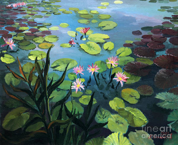 Wall Art - Painting - Lotus Flowers  by Kiril Stanchev