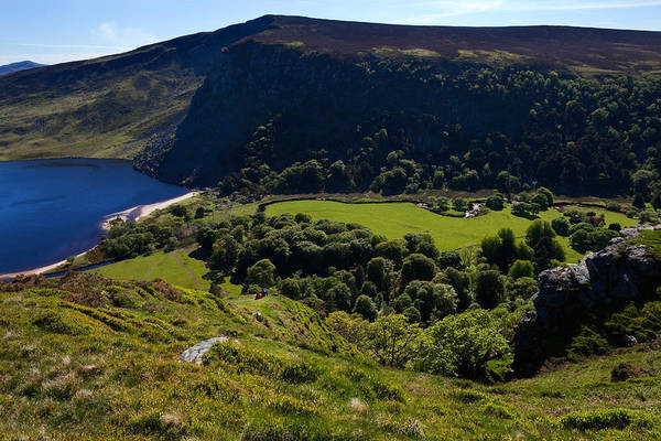 Moorland Photograph - Lough Tay Below Luggala Mountain by Panoramic Images