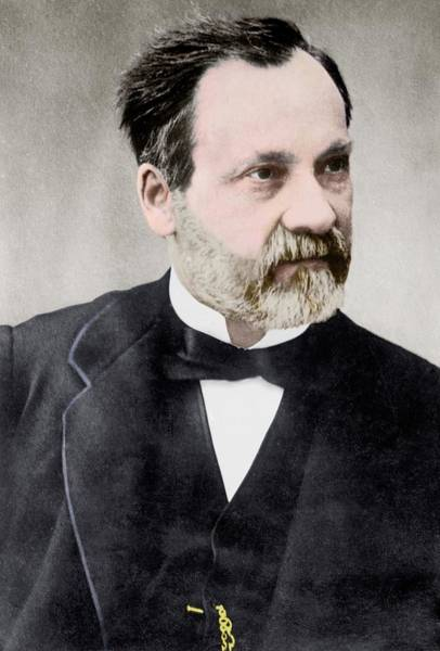 1800s Wall Art - Photograph - Louis Pasteur by Library Of Congress