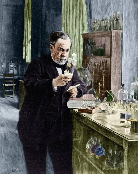 Wall Art - Photograph - Louis Pasteur by Michael Marten/science Photo Library