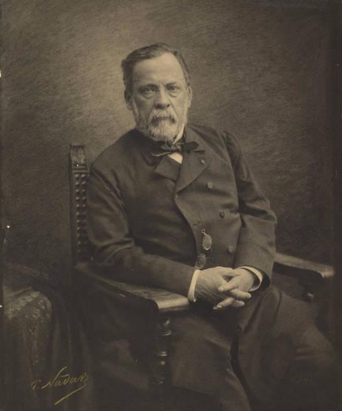 Photograph - Louis Pasteur by Paul Nadar