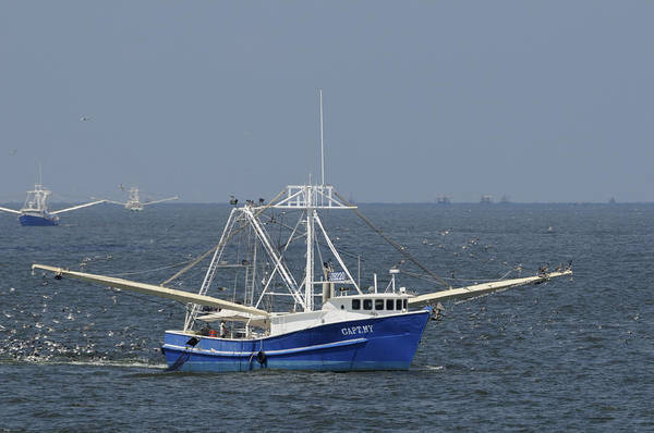 Photograph - Louisiana Shrimp Boats  by Bradford Martin