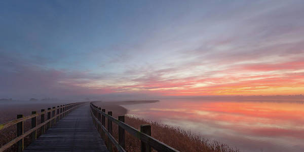 Walkway Wall Art - Photograph - Love A Morning Like This II. by Leif L?ndal