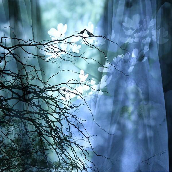 Twig Mixed Media - Love Bird's Garden by Kume Bryant