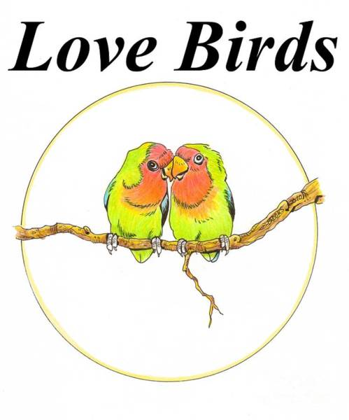 Green Parrot Drawing - Love Birds by Richard Brooks