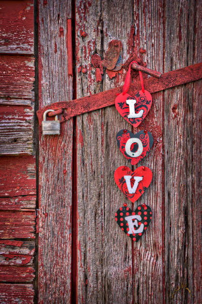 Photograph - Love Close Up At Windsor Castle by Williams-Cairns Photography LLC