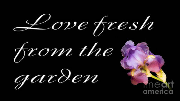 Photograph - Love Fresh From The Garden by Andee Design