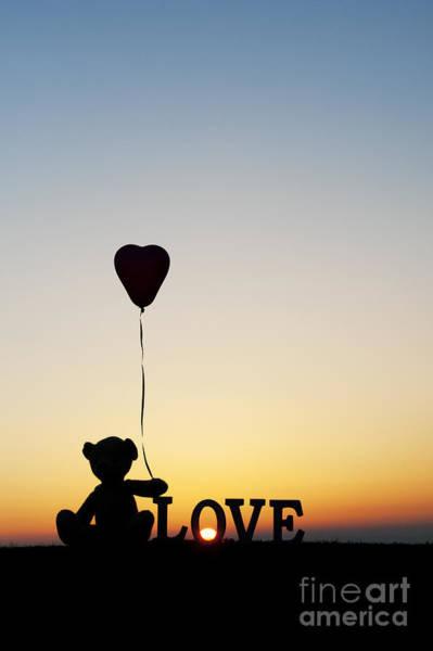 Photograph - Love Heart Bear by Tim Gainey