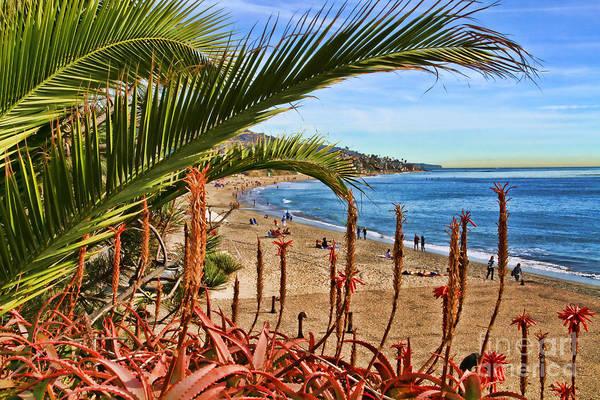 Photograph - Love In Laguna Beach By Diana Sainz by Diana Raquel Sainz