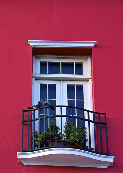 Wall Art - Photograph - Love In San Juan by Kathi Isserman