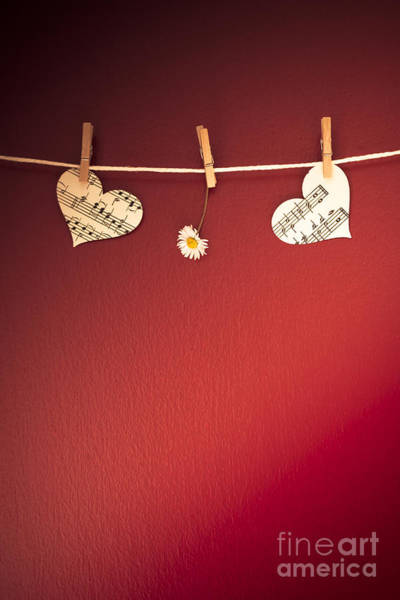 Peg Wall Art - Photograph - Love On The Line by Jan Bickerton