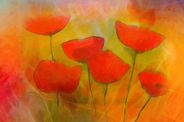 Painting - Lovely Poppies by Lutz Baar