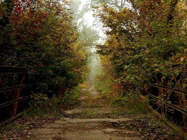 Photograph - Lover's Autumn Lane by Wild Thing