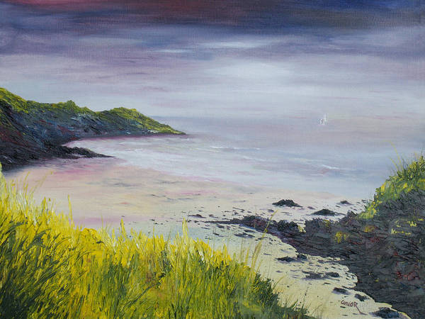 Painting - Lovers Cove Kinsale   by Conor Murphy