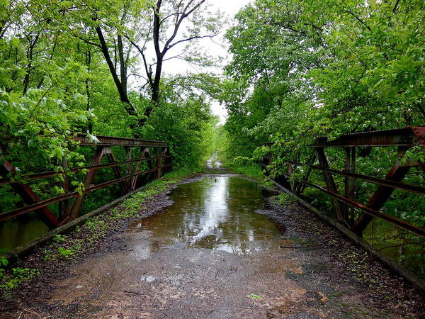 Photograph - Lover's Lane by Wild Thing