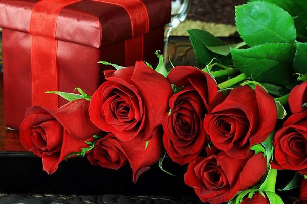 Photograph - Lovers Roses For Christmas by Doc Braham