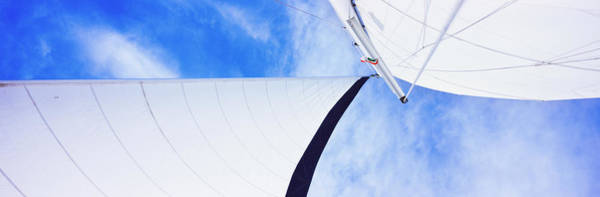 Sea Of Cortez Photograph - Low Angle View Of Sails On A Sailboat by Panoramic Images