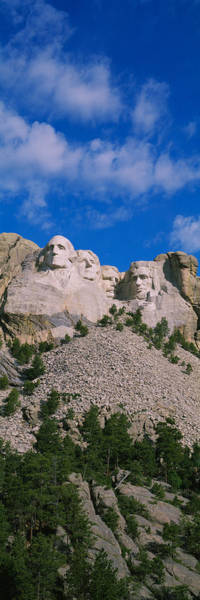 Roosevelt National Forest Photograph - Low Angle View Of Sculptures Of Us by Panoramic Images