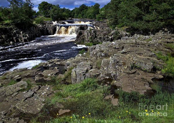 Photograph - Low Force Waterfall In The English Dales by Martyn Arnold
