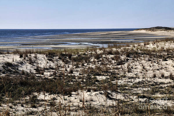 Photograph - Low Tide At Cape Henlopen Usa by Gerlinde Keating - Galleria GK Keating Associates Inc