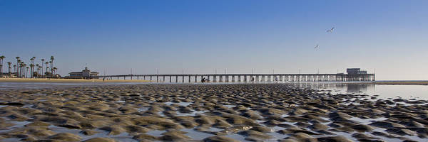 Roller Blades Photograph - Low Tide At The Newport Pier by Harold Vaagan