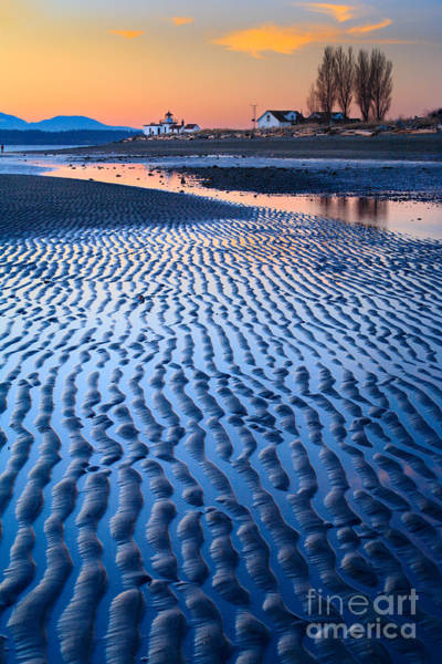 Photograph - Low Tide In Seattle by Inge Johnsson