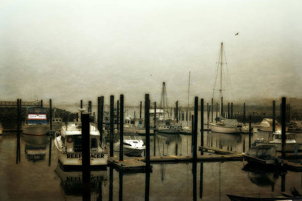 Photograph - Low Tide by Michelle Calkins
