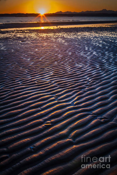 Photograph - Low Tide Ripples by Inge Johnsson