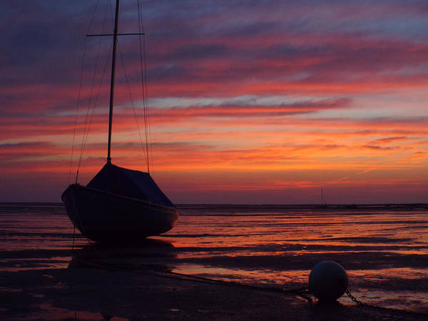 Wall Art - Photograph - Sunrise At Low Tide by Dianne Cowen