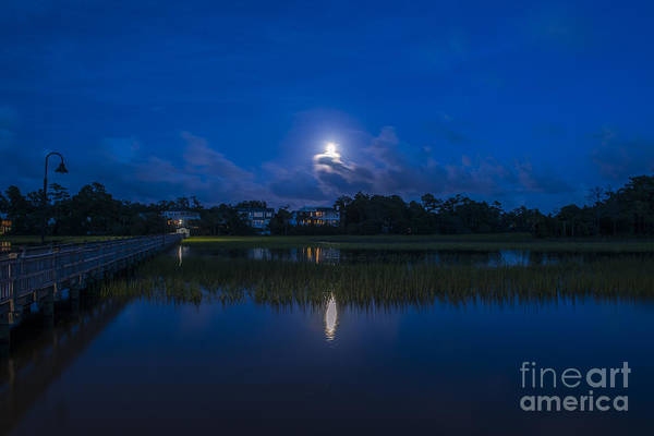 Photograph - Lowcountry Moon by Dale Powell
