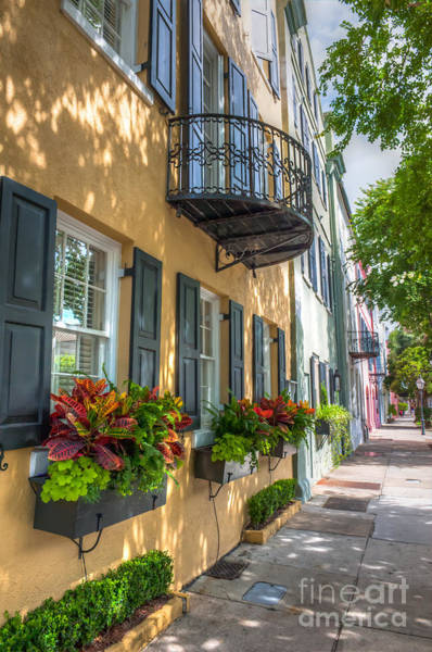 Photograph - Lowcountry Rainbow Row by Dale Powell