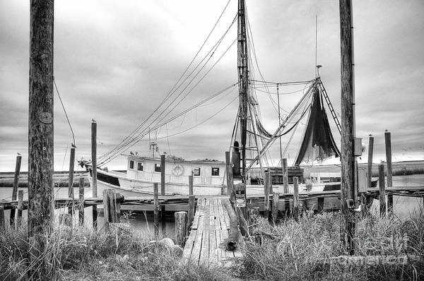 Lowcountry Shrimp Boat Art Print