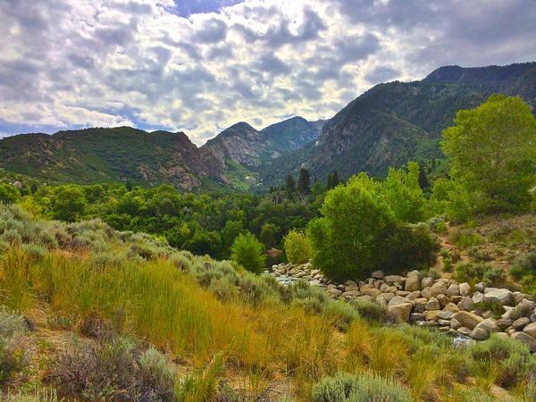 Photograph - Lower Bells Canyon by Dan Miller