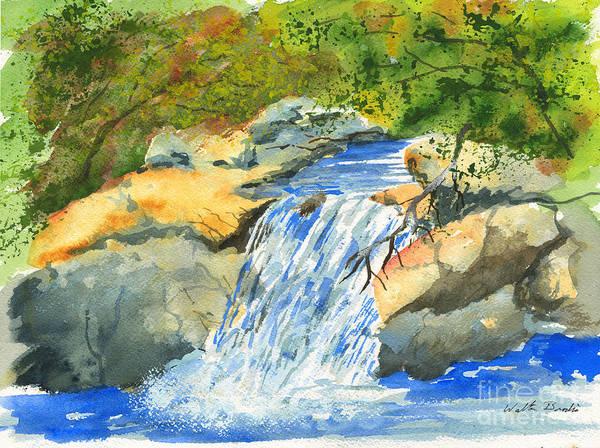 Lower Burch Creek Art Print