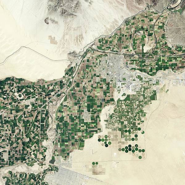 Wall Art - Photograph - Lower Colorado River by Nasa Earth Observatory