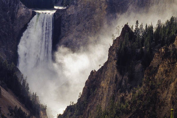 Photograph - Lower Falls Of The Yellowstone by Craig Ratcliffe