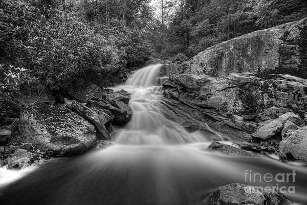 Photograph - Lower Falls On Big Run River  by Dan Friend