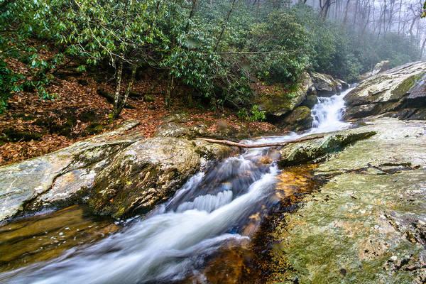 Photograph - Lower Falls On Upper Creek by Randy Scherkenbach