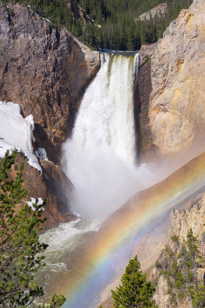 Photograph - Lower Falls With Rainbow - Yellowstone National Park by Aaron Spong