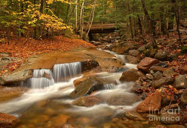 Photograph - Lower Flume Gorge Cascades by Adam Jewell