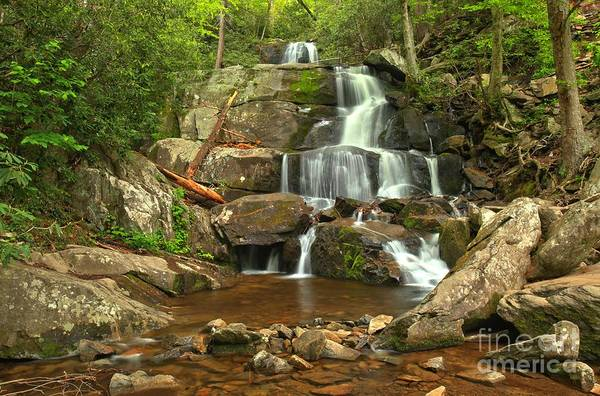 Photograph - Lower Laurel In The Smokies by Adam Jewell
