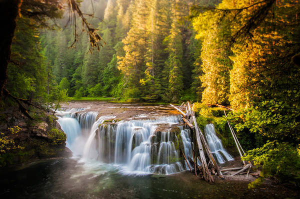 Photograph - Lower Lewis River Falls Sunrise by Brian Bonham