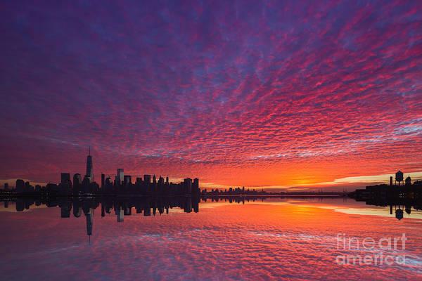 Wall Art - Photograph - Lower Manhattan  by Michael Ver Sprill