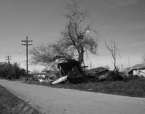 Photograph - Lower Ninth Ward 2005 In New Orleans by Louis Maistros