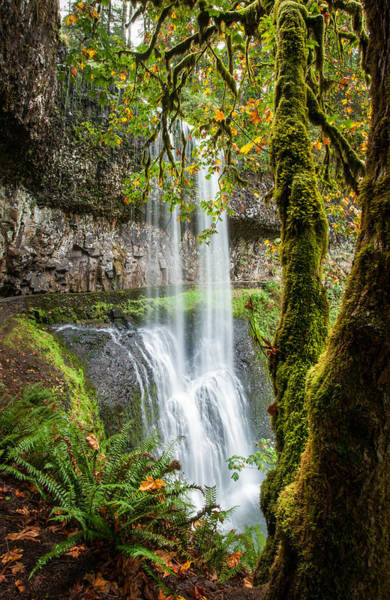 Photograph - Lower South Falls by Brian Bonham